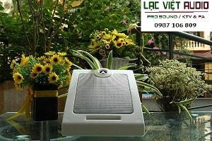 LOA HỘP DB CS 501