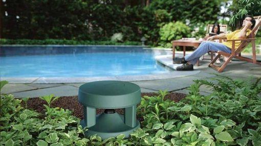 Loa Bose Free Space 51 có thể sử dụng tốt cho các sân vườn gia đình, quán cafe,...